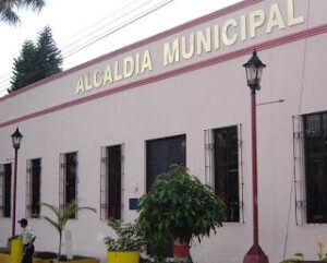 Alcaldia Zarzal - Valle